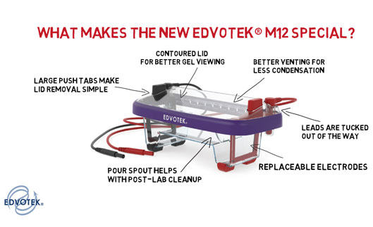 The Evolution of Electrophoresis: The New Edvotek® M12