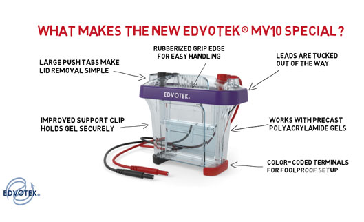 SDS-PAGE Made Simple: The New Edvotek® MV10