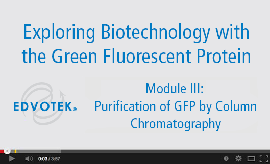 Module III: Purification of GFP by Column Chromatography