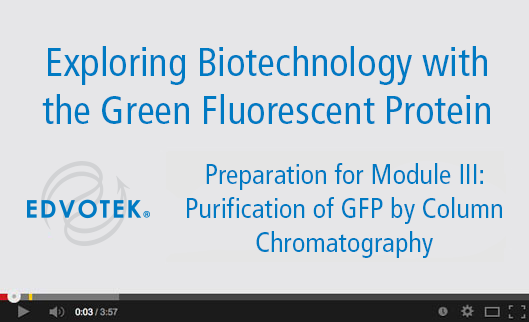 Preparation for Module III: Purification of GFP by Column Chromatography