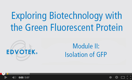 Module II: Isolation of GFP