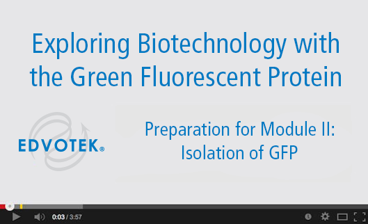 Preparation for Module II: Isolation of GFP
